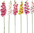 Modern Large Orchid - Real Touch Home Decor Artificial Flowers 3d Orchid 95cm