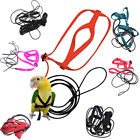 Pet Parrot Bird Harness Lead Leash Flying Training Rope Cockatiel Outdoor QW