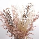 Ruscus Spray 73cmh Dried Artificial Faux Flowers Home Party Decoration Filler