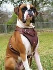 Dean & Tyler The Boss Leather Dog Harness with Chest Plate and Optional Handle