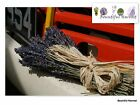 Short Stem Deep Blue Dried Lavender Bunch 200 Flowers OR Pale Purple Petal 35cm