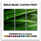 Grass Water Drops FLORAL  Canvas Art Print Box Framed Picture Wall Hanging BBD