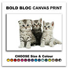 Kittens Cats Pets ANIMALS  Canvas Art Print Box Framed Picture Wall Hanging BBD