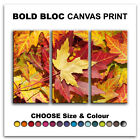 Autumn Leaves FLORAL  Canvas Art Print Box Framed Picture Wall Hanging BBD