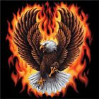 BEAUTIFUL EAGLE WITH FLAMES - Pretty T-Shirt - Sizes S - 4X (Men's Sizes)