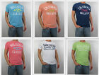 NWT HOLLISTER HCO 2013 Men Muscle Slim Fit Moor Park T Shirt Tee By Abercrombie
