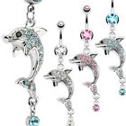 316L Surgical Steel Multi CZ Paved Dolphin with Orb Drop Dangle Navel Ring
