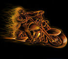Skull Flames Motorcycle Biker Adult T-shirt