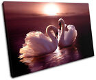 Swans Love Hearts Pink Animals SINGLE CANVAS WALL ART Picture Print VA