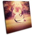 Droplet concept abstract SINGLE CANVAS WALL ART Picture Print VA