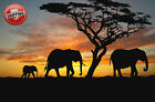African Elephants Sunset Silhouette Poster Print Wall Art Photo Modern Picture