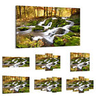 47 Shapes Canvas Picture Print Wall Art Forest Landscape Waterfall River 2636 E