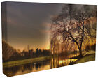 Beautiful Landscape Tree by the Lake Canvas Print Wall Art Premium Quality