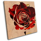 Abstract Rose Love Floral SINGLE CANVAS WALL ART Picture Print VA