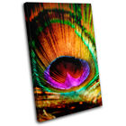 Peacock Feathers Animals SINGLE CANVAS WALL ART Picture Print VA