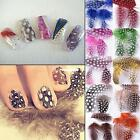 FANCY POLKA DOT DECALS DIY DECORATION STYLISH FEATHER STICKERS 3D NAIL ART TIPS