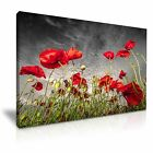 FLOWER Poppy 7 1-L Canvas Framed Printed Wall Art ~ More Size