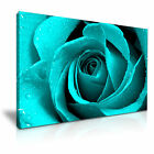 ROSE Flower Floral Modern Wall Art Canvas Print Framed Box ~ Many Sizes & Style