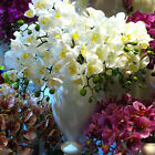 "80cm 31.5"" WHITE 8 HEADS ARTIFICIAL REAL TOUCH PU COATING SILK ORCHID FLOWER"