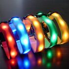 Flashing orange night LED collars for pets dogs size M-L-XL-S