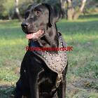 New Dog Harness with Soft Nappa Lining | Leather Dog Harness Luxury Royal Style