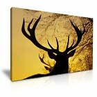 Animal Deer Stag Sunset Canvas Modern Wall Art Picture Print ~ 9 Sizes