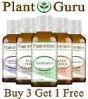 Essential Oils 30 ml. / 1 oz. - 100% Pure & Natural Therapeutic Grade Oil