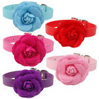 Cute PU Leather Puppy Dog Cat Collar With Flower & Diamante Buckle For Small Dog