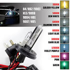 xenon light bulb replacement - Two Xentec HID Kit 's Replacement Xenon Light Bulb Dual beam Hi