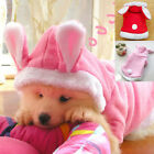 Newest style Pet Dog Cat Bunny Clothes Warm Clothes Autumn Winter Puppy Costume