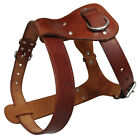 Brown Real Genuine Leather Dog Harness Durable for Large Dogs Pitbull M L size
