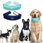 Cooling Pet Dog Collars Summer Cooler Necklace Drop Heat Cool for Dogs XS S M L