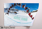 SHAUN WHITE GIANT WALL ART POSTER A0 A1 A2 A3