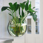 Fish Tank Wall Mount Bowl Plant Aquarium Tank Hanging Plexiglass Home Decor