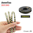 5M 2835 SMD LED Strip Light 600 Leds Not Waterproof DC 12V Cool/Warm White