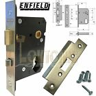 Enfield 76mm SS Dual Profile Euro Oval Cylinder Mortice Night Latch Anti-Thrust