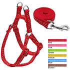 Polka Dot Nylon No Pull Pet Dog Harness and Lead Leash for Small Dogs Walking