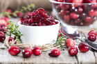 Cranberry Marmalade Soap /Candle Making Fragrance Oil 1-16 Ounce *FREE SHIPPING*