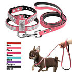 Rhinestone Suede Leather Padded Cat Dog Harness and Leash Soft for Puppy S M L