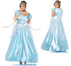 Womens Cinderella Classic Ball Gown Plus Size Costume