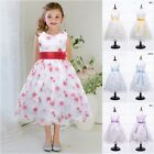 New Arrival Flower Girl Dress Floral Summer Party Tutu Wedding Birthday Clothes