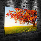 Maple tree Oil Painting HD Print Home Wall Decor Art on Canvas Unframed