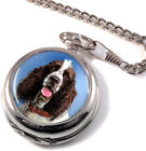 English Springer Spaniel Full Hunter Pocket Watch (Optional Engraving)