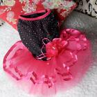 USA Pet Puppy Small Dog Lace Skirt Princess Tutu Dress Clothes Apparel Costume