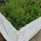 Carrot Fence Netting Kits - Includes Netting and Supports - Various Sizes