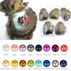 1/3PC Akoya Oysters With Unicorn Color Round Pearl At Least 1 In Every 6-8mm