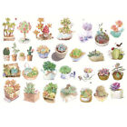 Newest Uncut Succulent Plant Adhesive Stationery Stickers Scrapbook Diary Decor