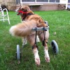 Wheel Cart Rear Leg Walk Training Support Wheelchair For Handicapped Pet Dog WCV