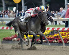 """Cloud Computing 2017 Preakness Stakes Photo 8"""" x 10 - 24"""" x 30"""""""