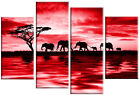 Red Canvas Art Picture Elephants Sunset Wall Art various sizes and styles